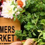 Holland Farmers Market